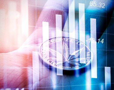 Marijuana stock market - mj