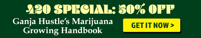 Ganja Hustle Book