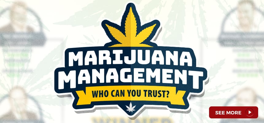 marijuana-management-who-can-you-trust-bracket-1