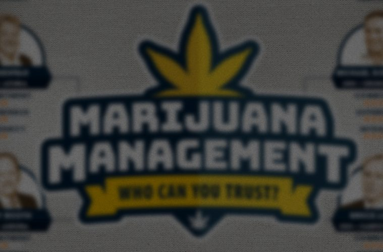 Marijuana management - Top 4 Licensed Producers / Growers