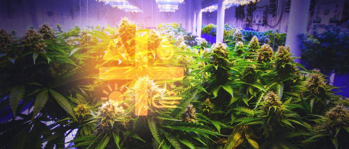 Aurora Cannabis Inc. (TSE:ACB) - debt facility with BMO