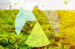 aphria-signs-greenhouse-deal-denmark-global-expansion