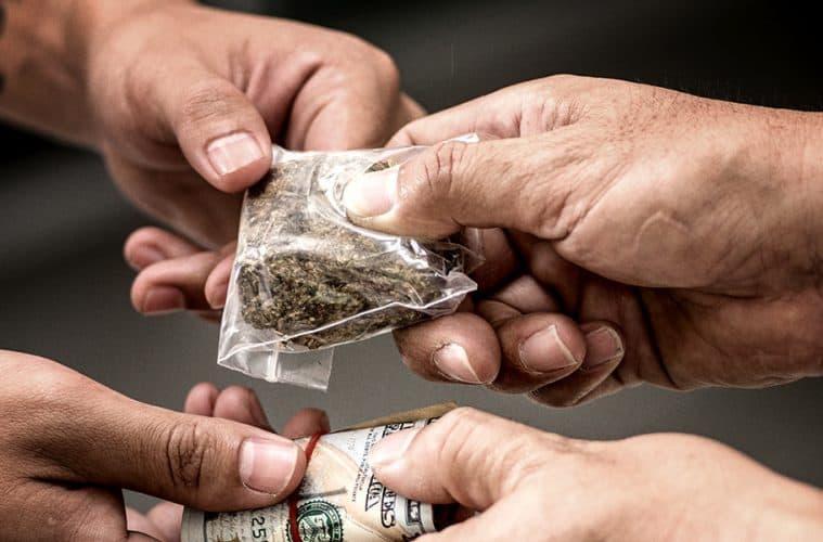 black-market-cannabis-price-falling