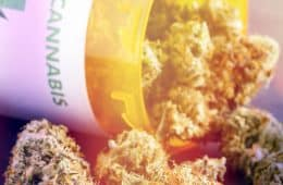 starseed-medicinal-to-supply-medical-marijuana-for-shoppers-drug-mart-4