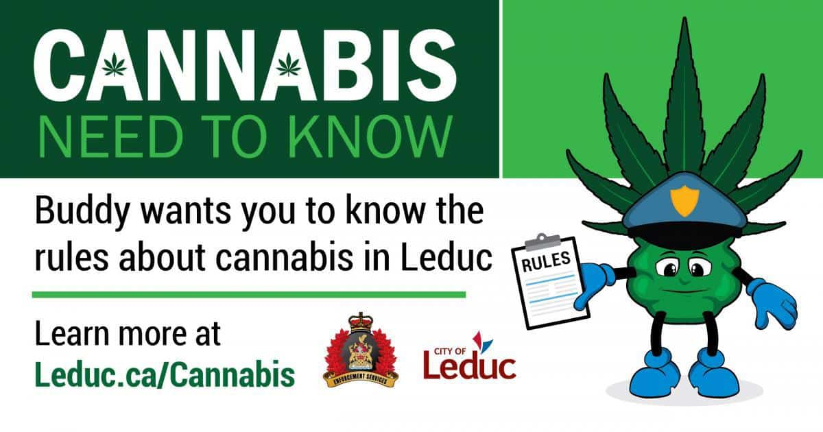 Buddy - City of Leduc cannabis campaign