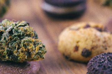 marijuana edibles - mj generic 8