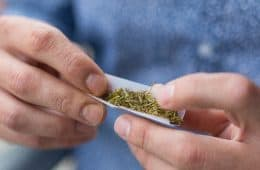 marijuana rolling - mj generic 10