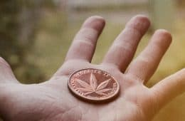 marijuana - mj investing 6