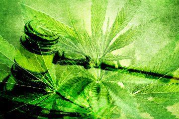 Marijuana law - mj law 1