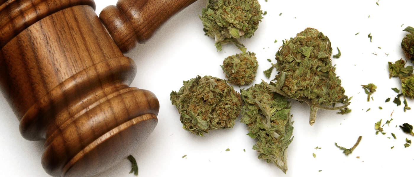 marijuana - mj law 2