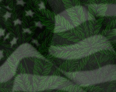 Power of a U.S. Cannabis Listing