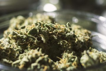 Green Thumb Industries To Open New Dispensary In