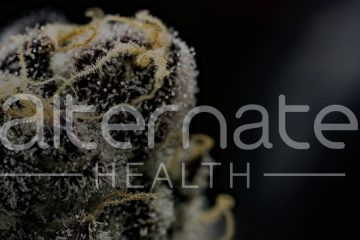 Alternate Health - marijuana