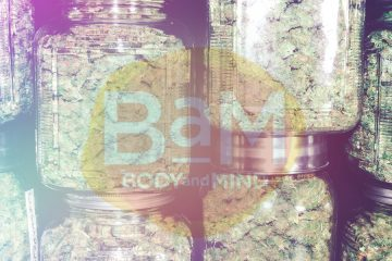 BAM - Body and Mind Cannabis