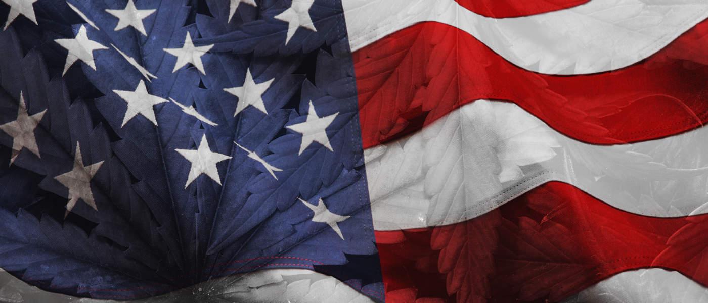 Marijuana - United States USA - MJ