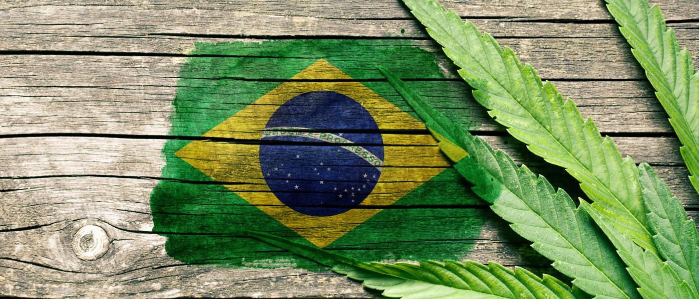 Marijuana - Brazil - MJ