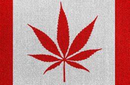 Marijuana Canada - mj