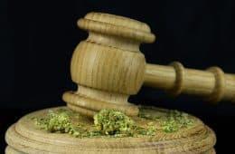 marijuana-law-11 mj