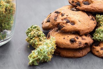 Cannabis / Marijuana products / Edibles - mj