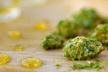 mj - marijuana and oil
