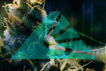 Tilray - Marijuana
