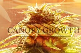canopy-growth-earnings-02