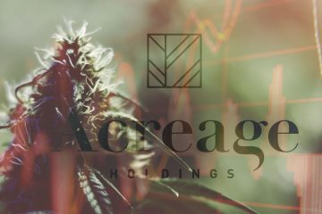 Cresco Labs Approved To Enter Michigan Cannabis Market | Grizzle
