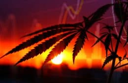 marijuana-stocks-33