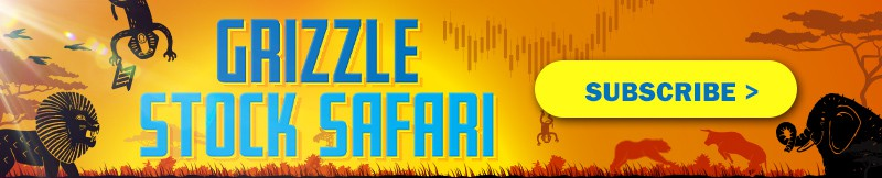 grizzle-stock-safari-substack